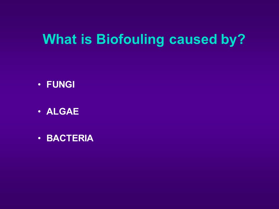 What is Biofouling caused by
