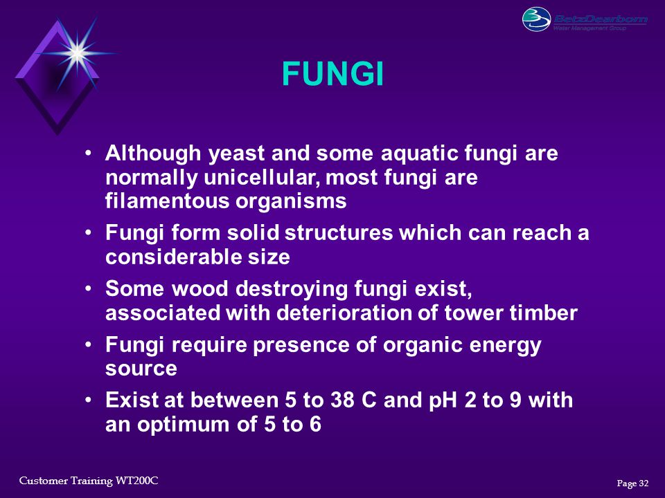 FUNGI Although yeast and some aquatic fungi are normally unicellular, most fungi are filamentous organisms.
