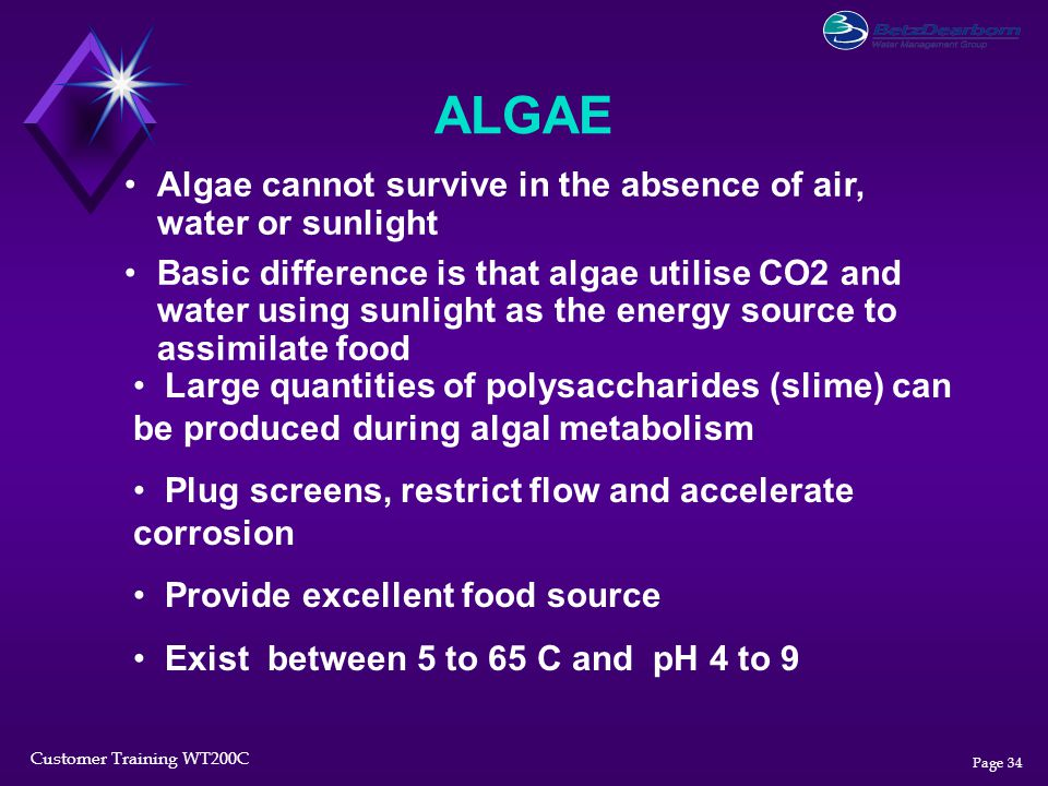 ALGAE Algae cannot survive in the absence of air, water or sunlight