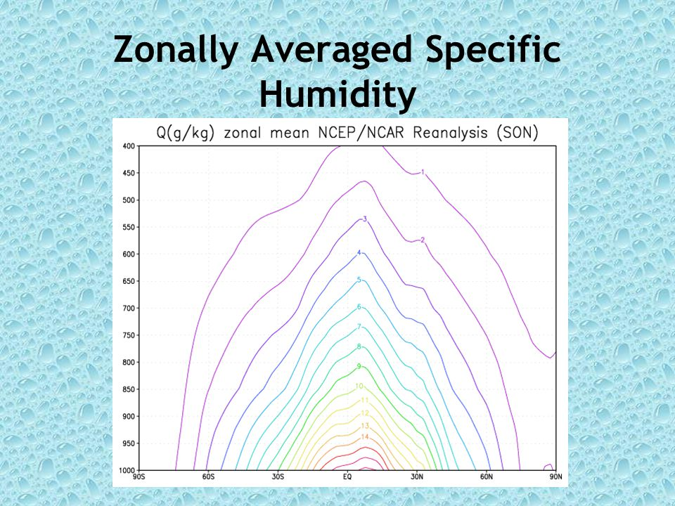 Zonally Averaged Specific Humidity