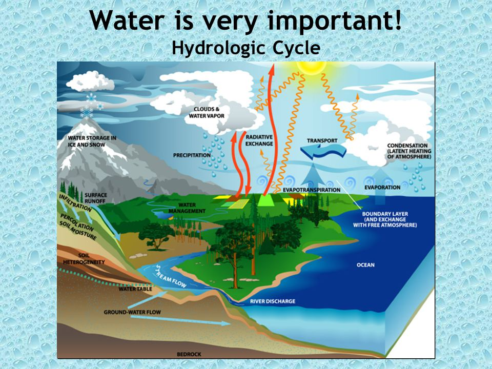 Water is very important! Hydrologic Cycle