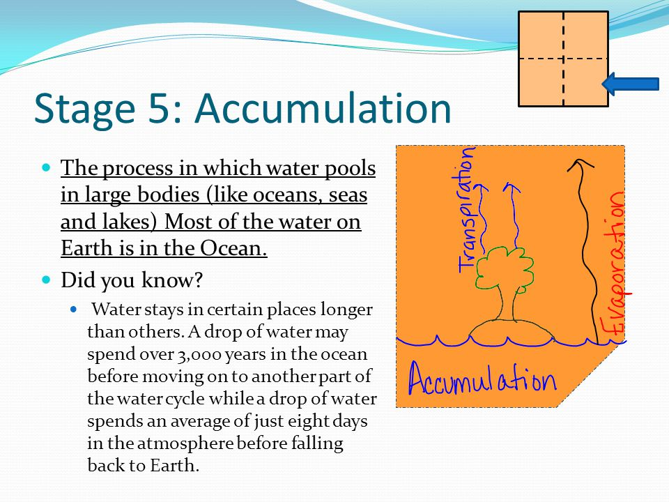 Stage 5: Accumulation The process in which water pools in large bodies (like oceans, seas and lakes) Most of the water on Earth is in the Ocean.