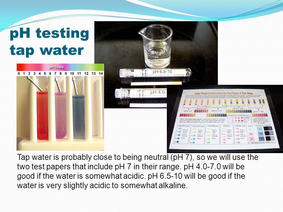 pH testing tap water