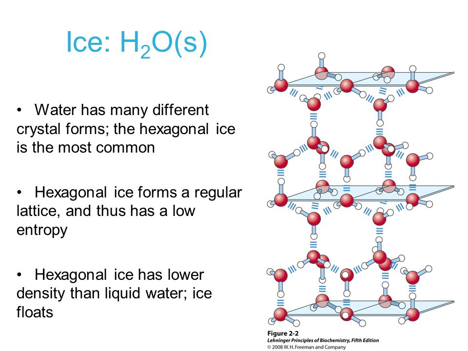 Ice: H2O(s) Water has many different crystal forms; the hexagonal ice is the most common.