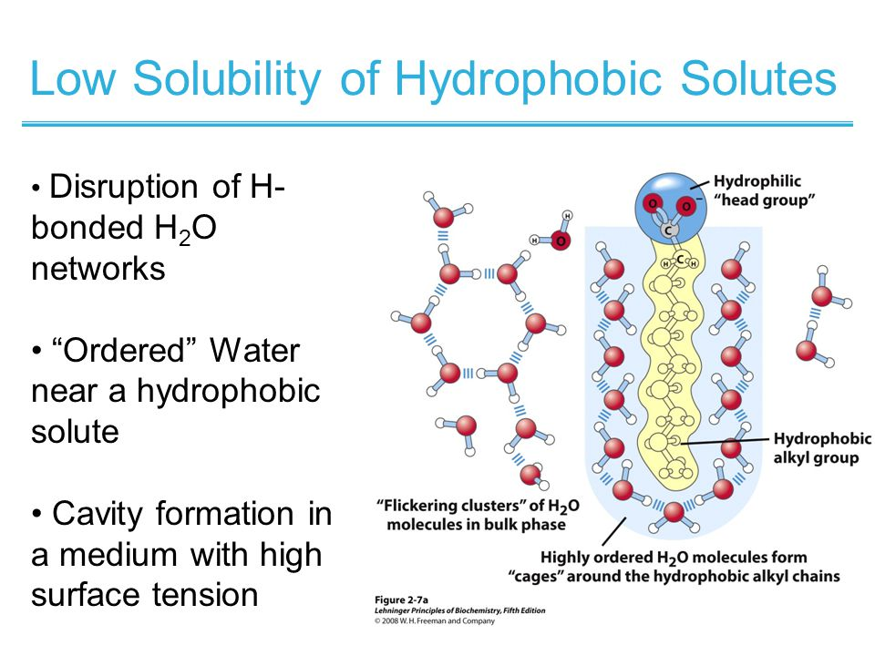 Low Solubility of Hydrophobic Solutes