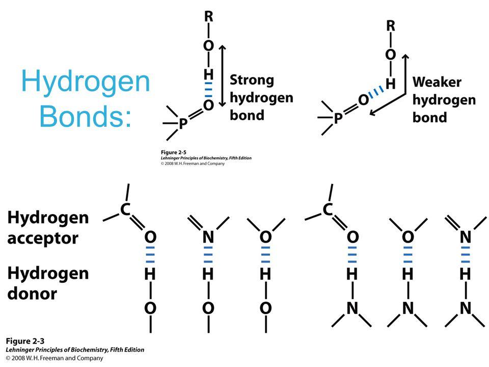 Hydrogen Bonds: