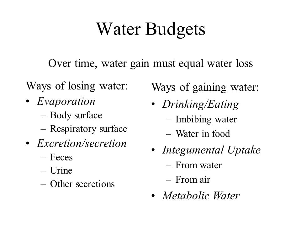 Water Budgets Over time, water gain must equal water loss