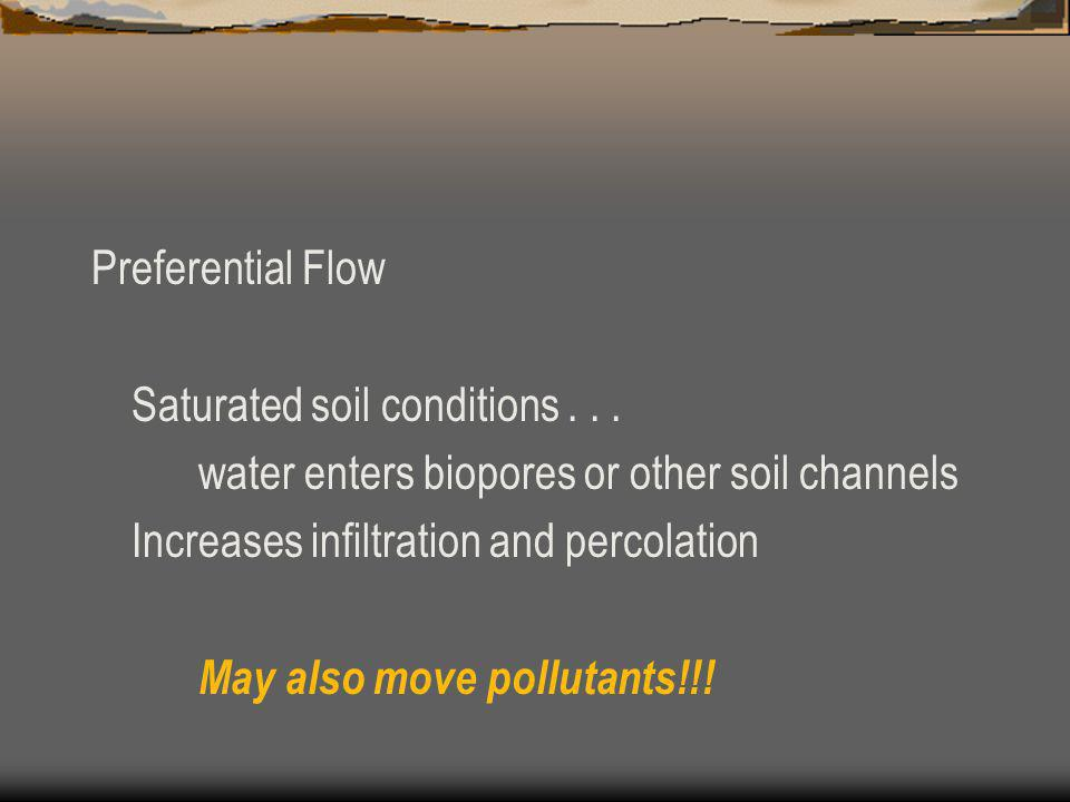 Preferential Flow Saturated soil conditions . . . water enters biopores or other soil channels. Increases infiltration and percolation.