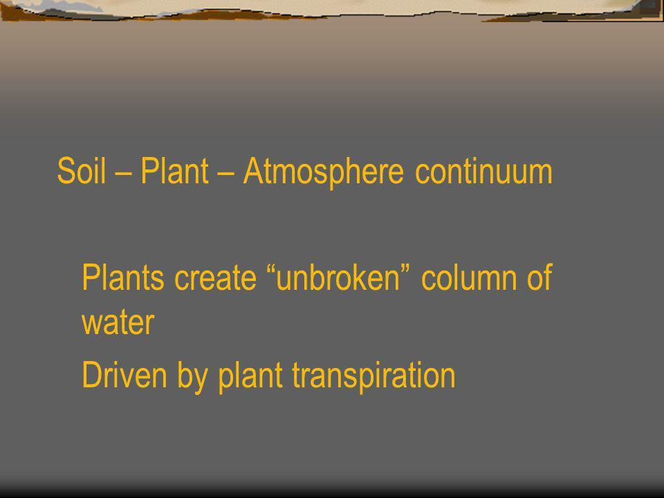 Soil – Plant – Atmosphere continuum