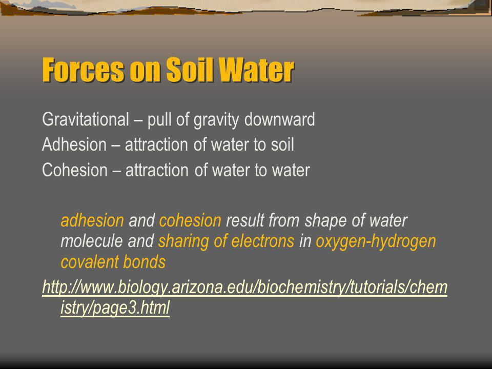 Forces on Soil Water Gravitational – pull of gravity downward