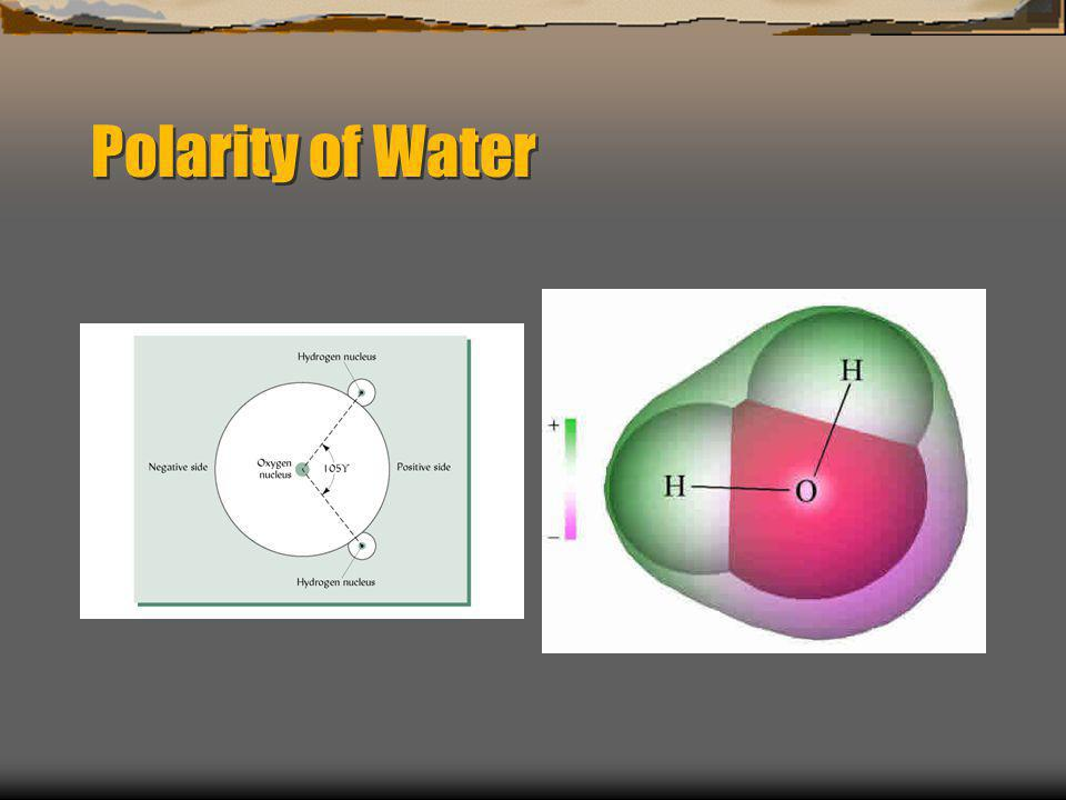 Polarity of Water