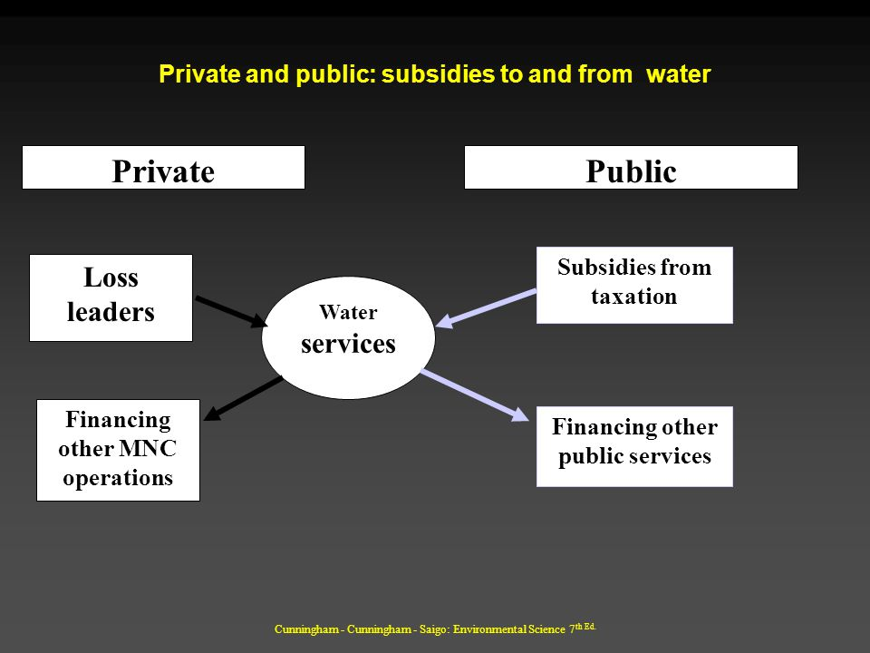 Private and public: subsidies to and from water
