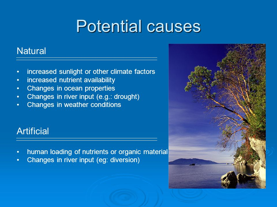 Potential causes Natural Artificial