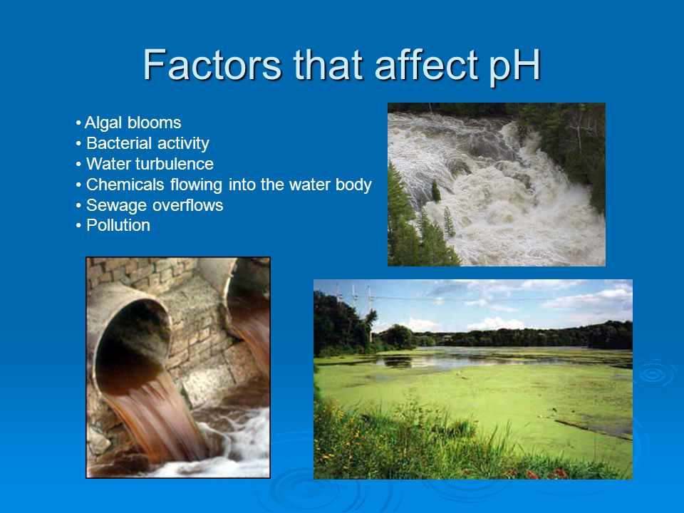 Factors that affect pH Algal blooms Bacterial activity