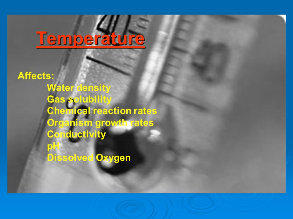 Temperature Affects: Water density Gas solubility