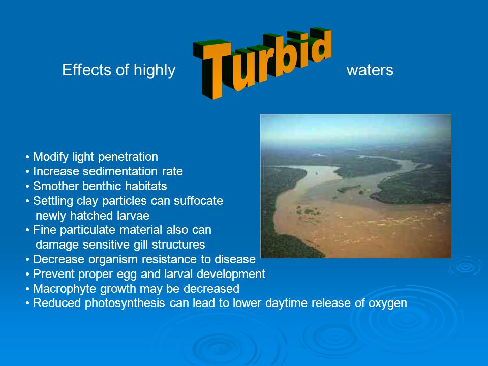 Turbid Effects of highly waters Modify light penetration