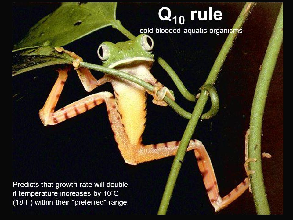 Q10 rule cold-blooded aquatic organisms