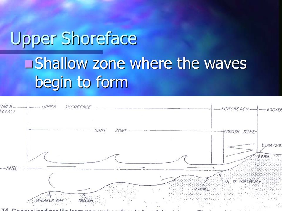 Upper Shoreface Shallow zone where the waves begin to form