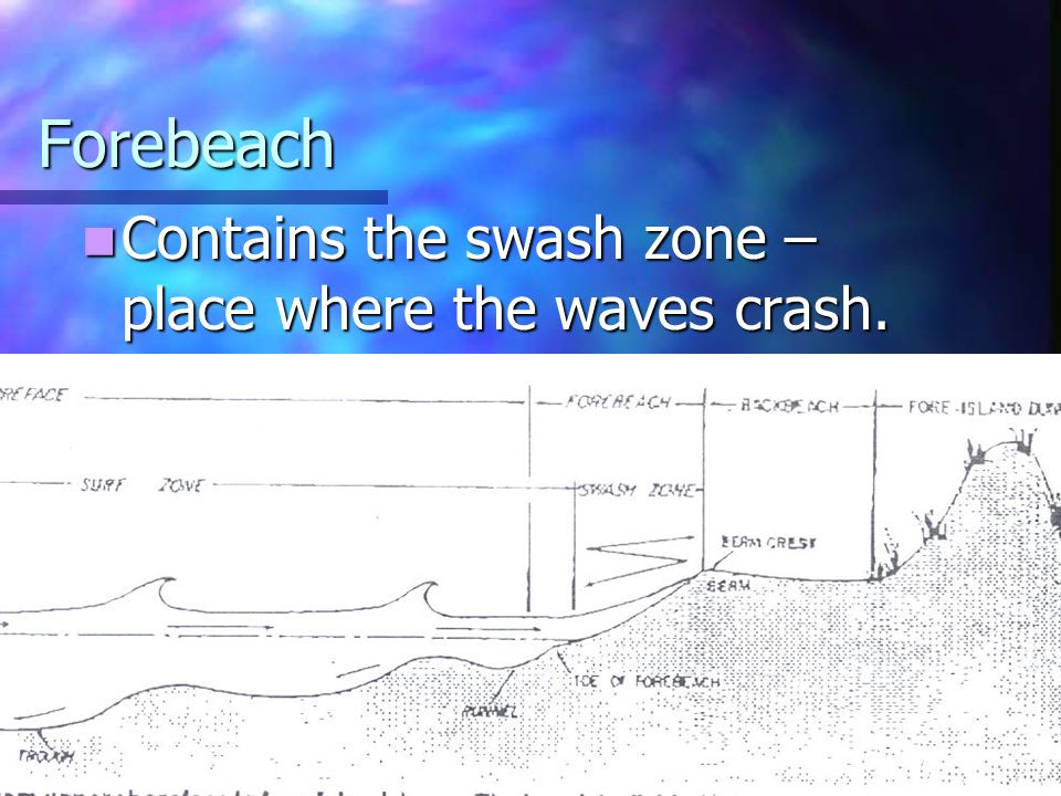 Forebeach Contains the swash zone – place where the waves crash.