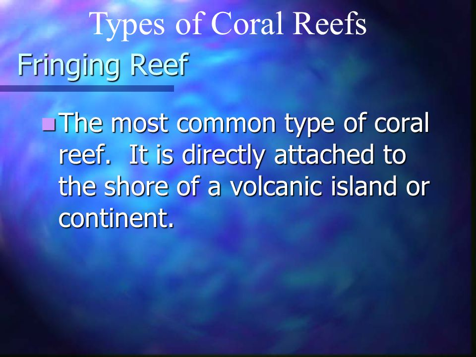 Types of Coral Reefs Fringing Reef