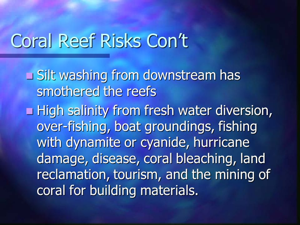 Coral Reef Risks Con't Silt washing from downstream has smothered the reefs.