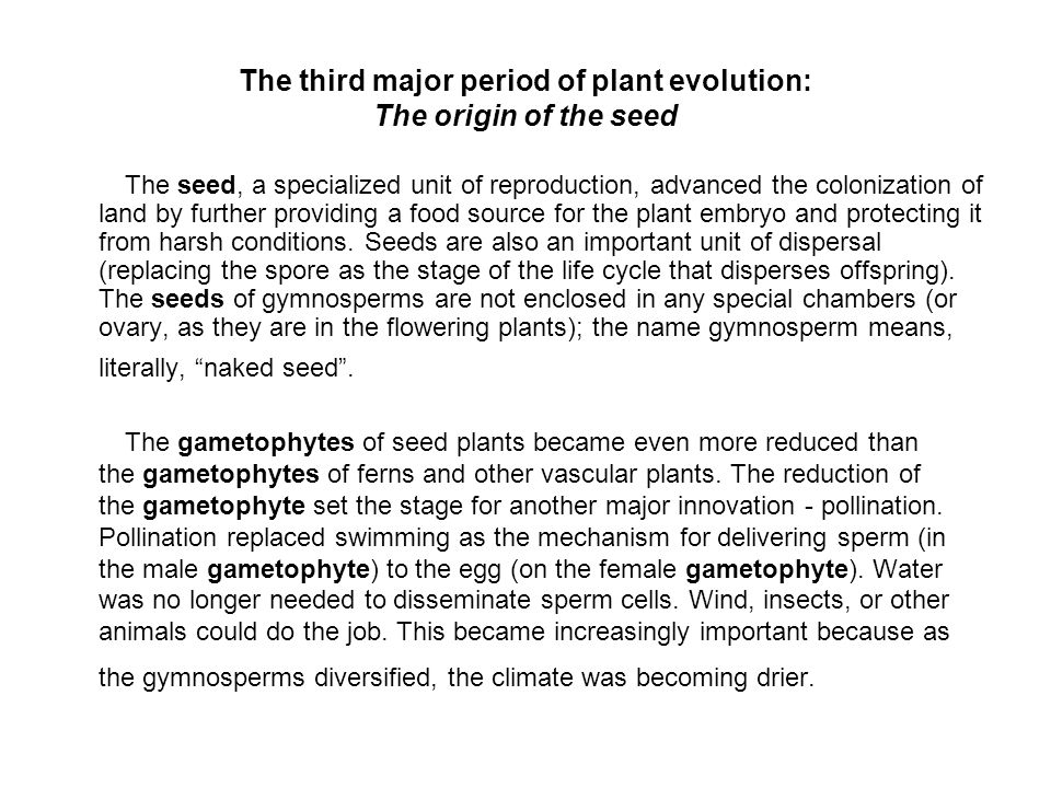 The third major period of plant evolution: The origin of the seed