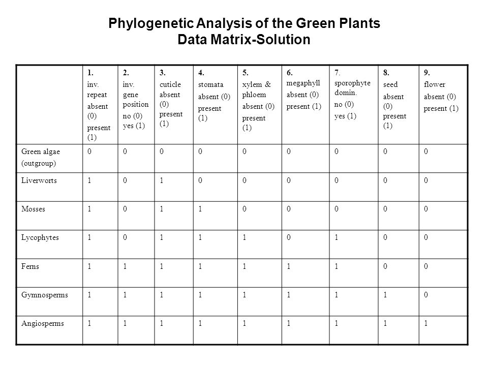 Phylogenetic Analysis of the Green Plants
