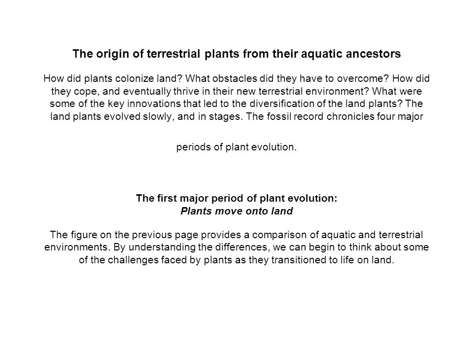 The origin of terrestrial plants from their aquatic ancestors How did plants colonize land.