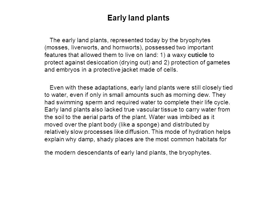 Early land plants