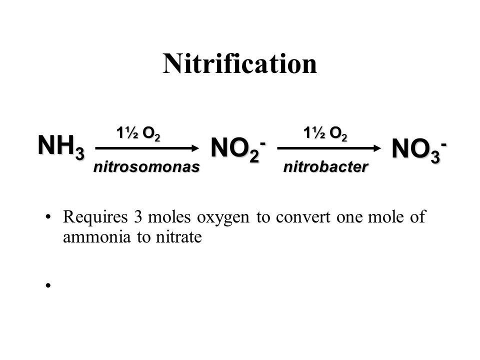 Nitrification NH3 NO2- NO3-