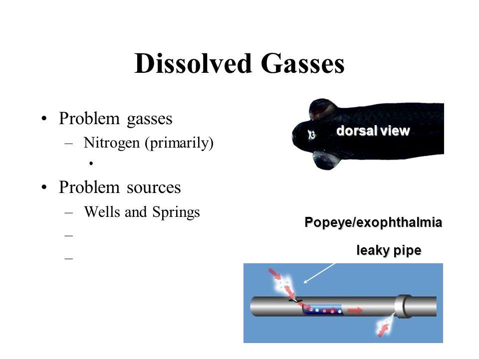 Dissolved Gasses Problem gasses Problem sources Nitrogen (primarily)