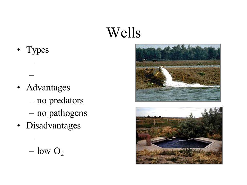 Wells Types Advantages no predators no pathogens Disadvantages low O2