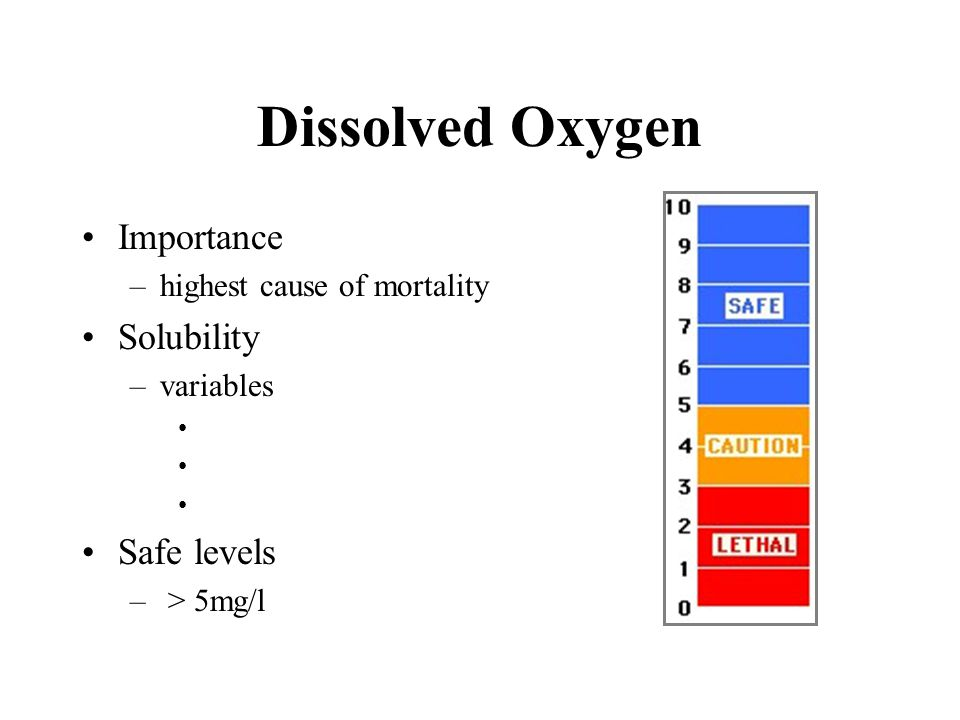 Dissolved Oxygen Importance Solubility Safe levels