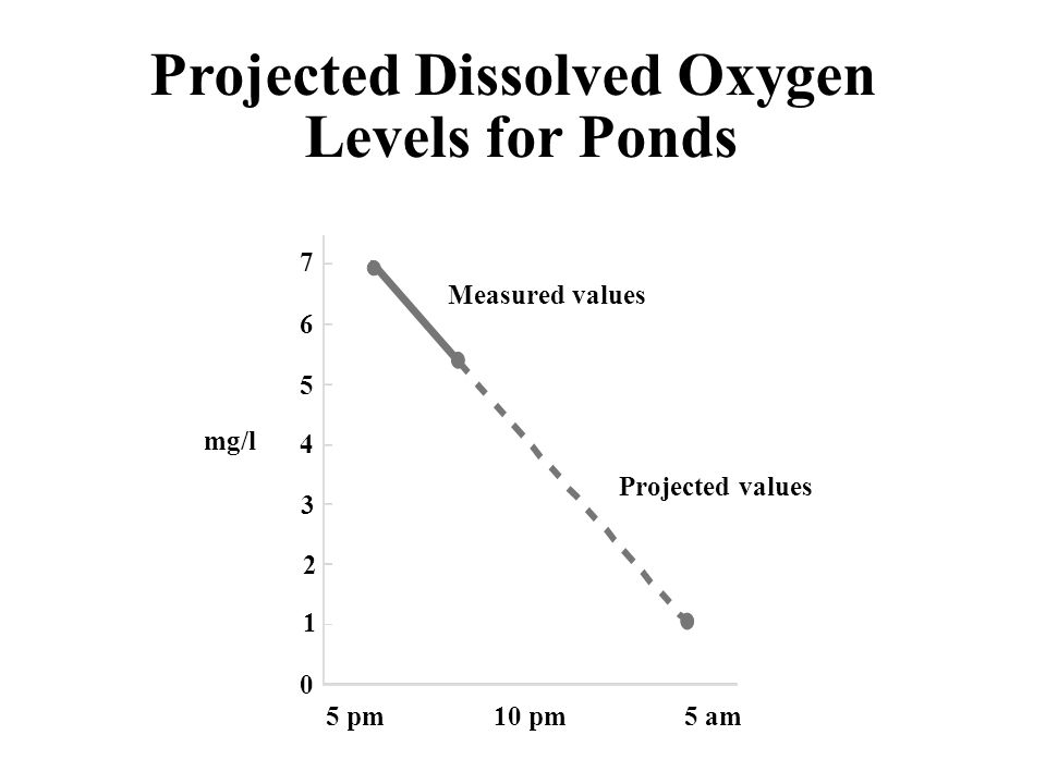 Projected Dissolved Oxygen