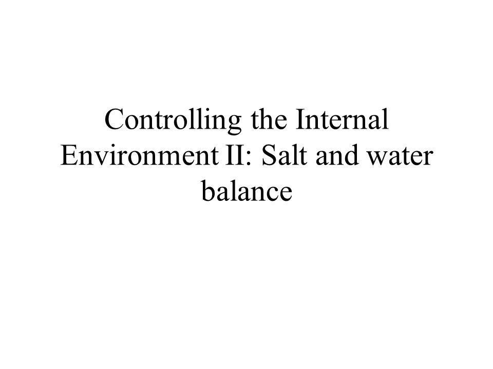 Controlling the Internal Environment II: Salt and water balance
