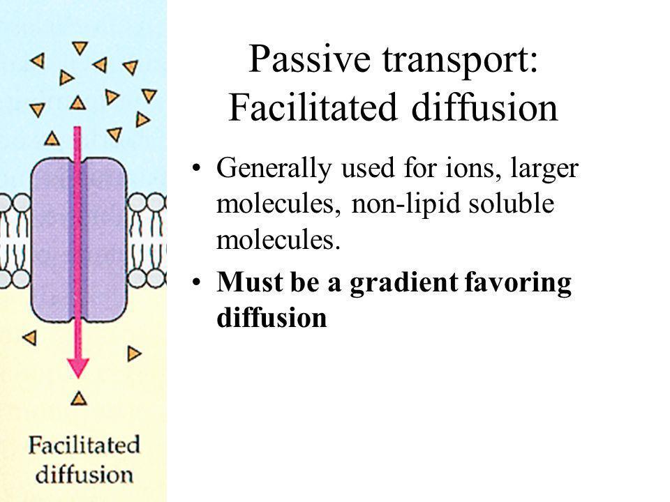 Passive transport: Facilitated diffusion