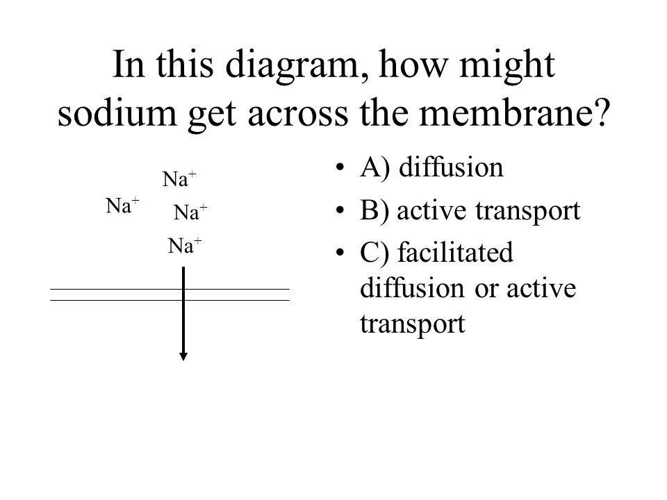 In this diagram, how might sodium get across the membrane
