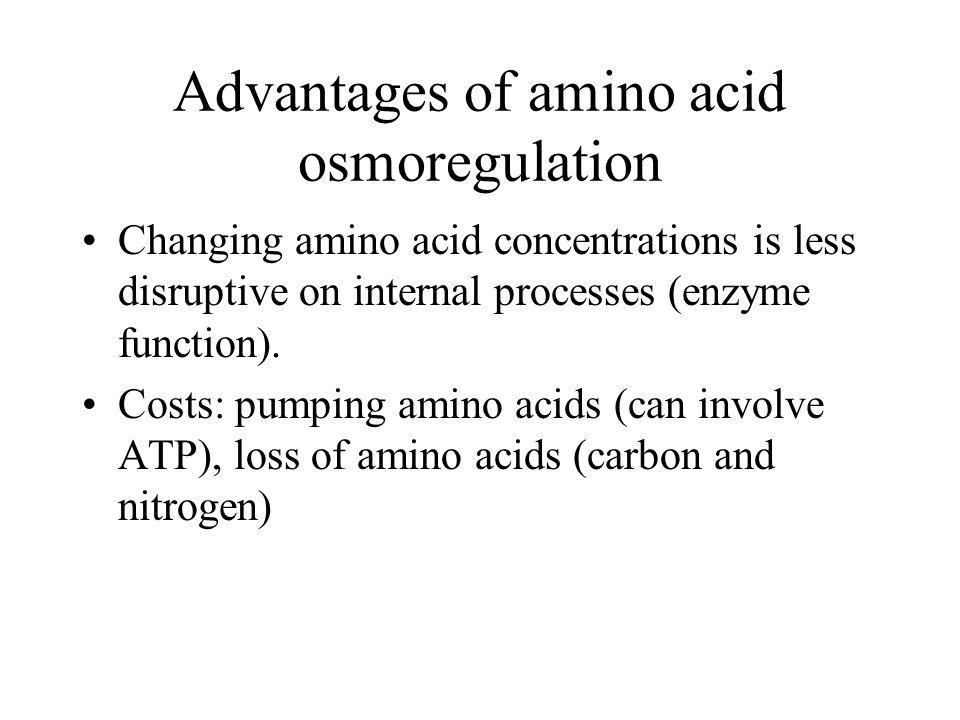 Advantages of amino acid osmoregulation