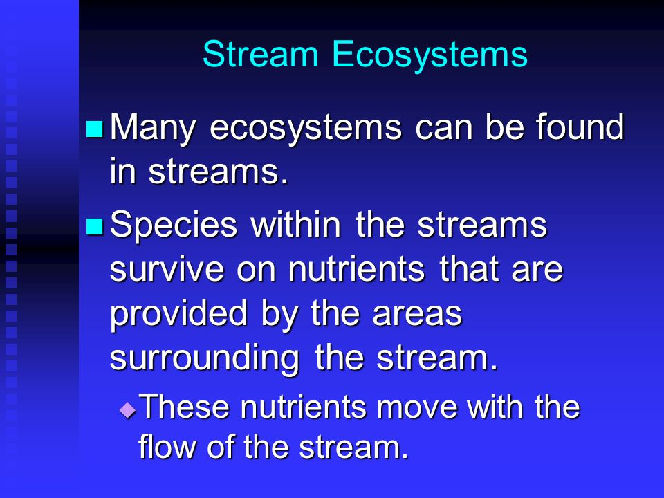 Many ecosystems can be found in streams.