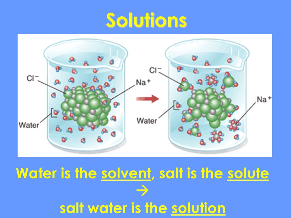 Water is the solvent, salt is the solute salt water is the solution