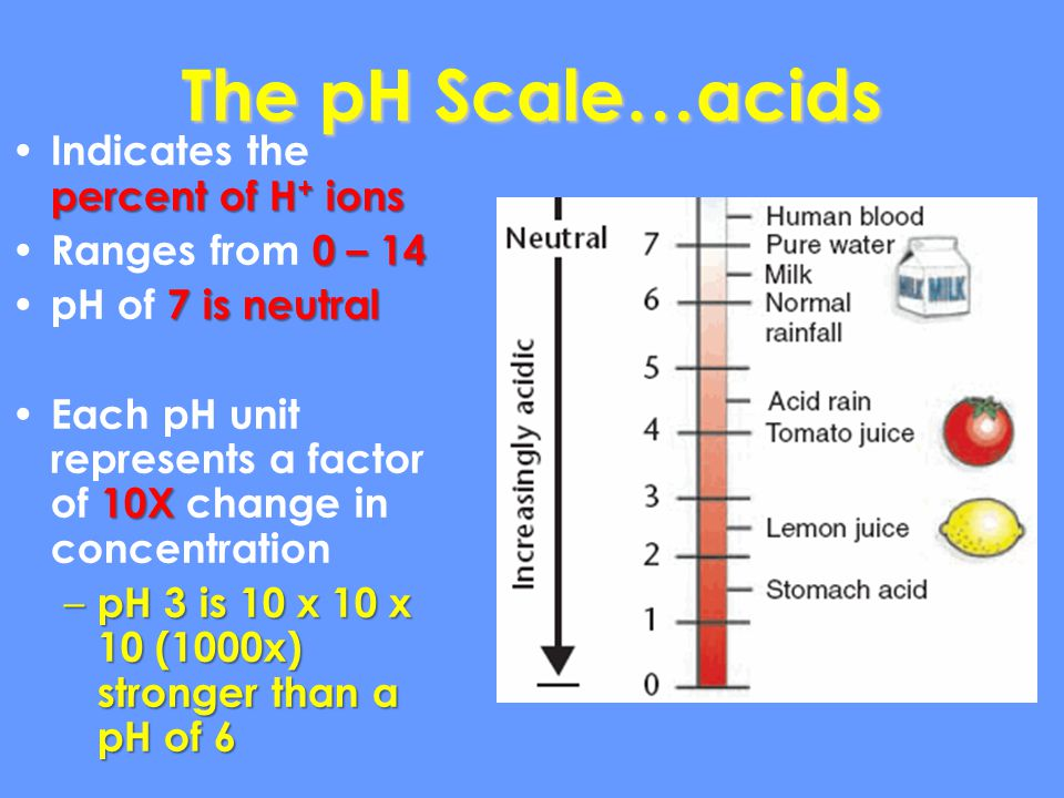 The pH Scale…acids Indicates the percent of H+ ions Ranges from 0 – 14