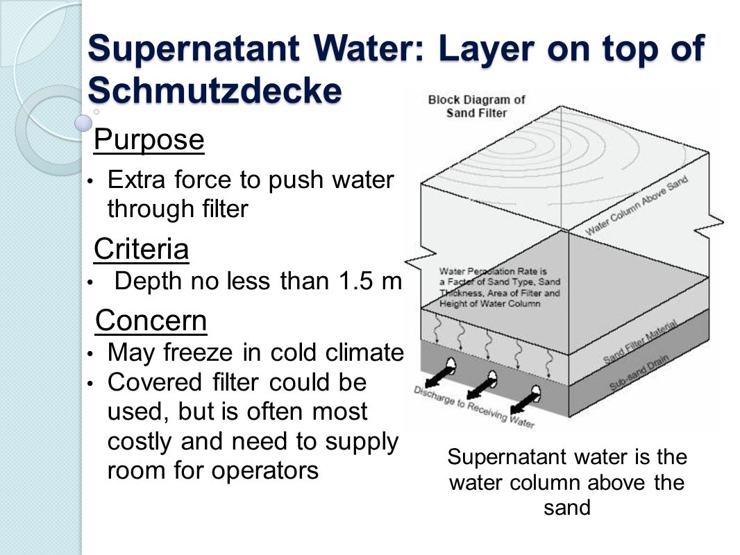 Supernatant Water: Layer on top of Schmutzdecke