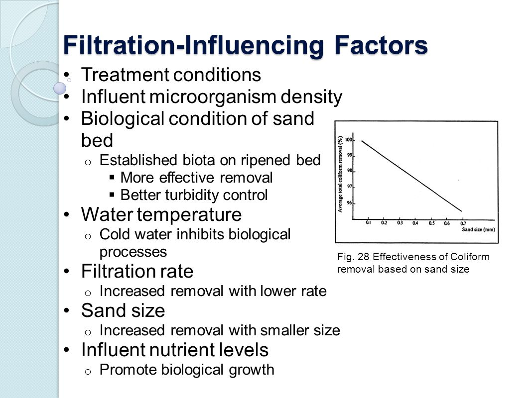 Filtration-Influencing Factors