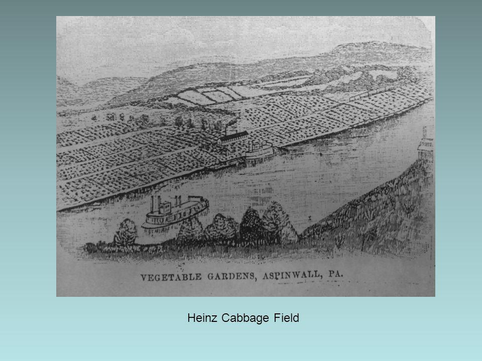 Heinz Cabbage Field