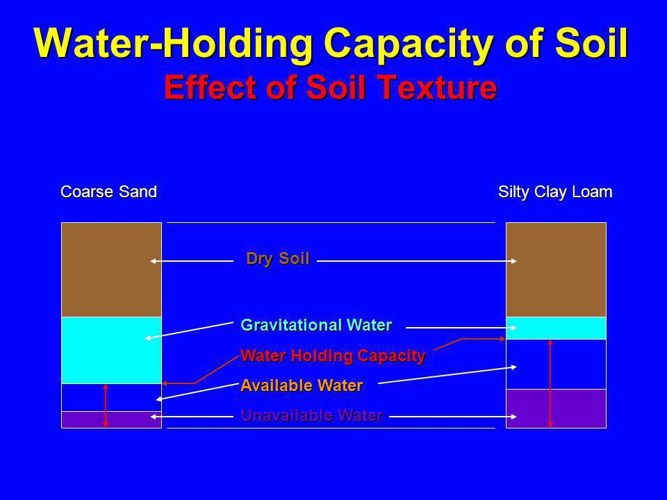 Water-Holding Capacity of Soil Effect of Soil Texture