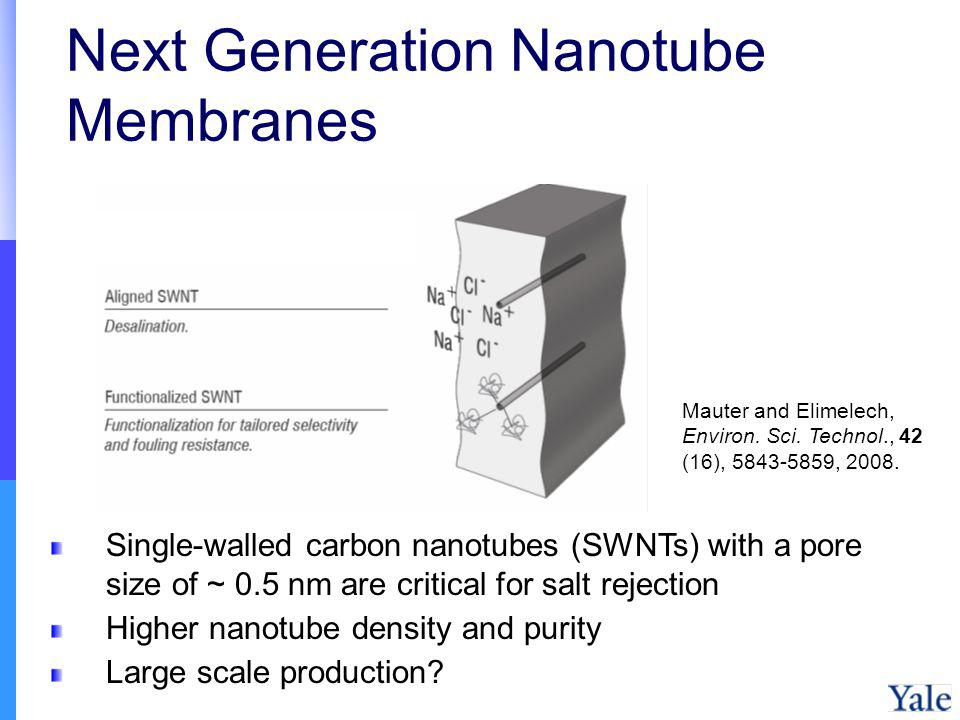 Next Generation Nanotube Membranes