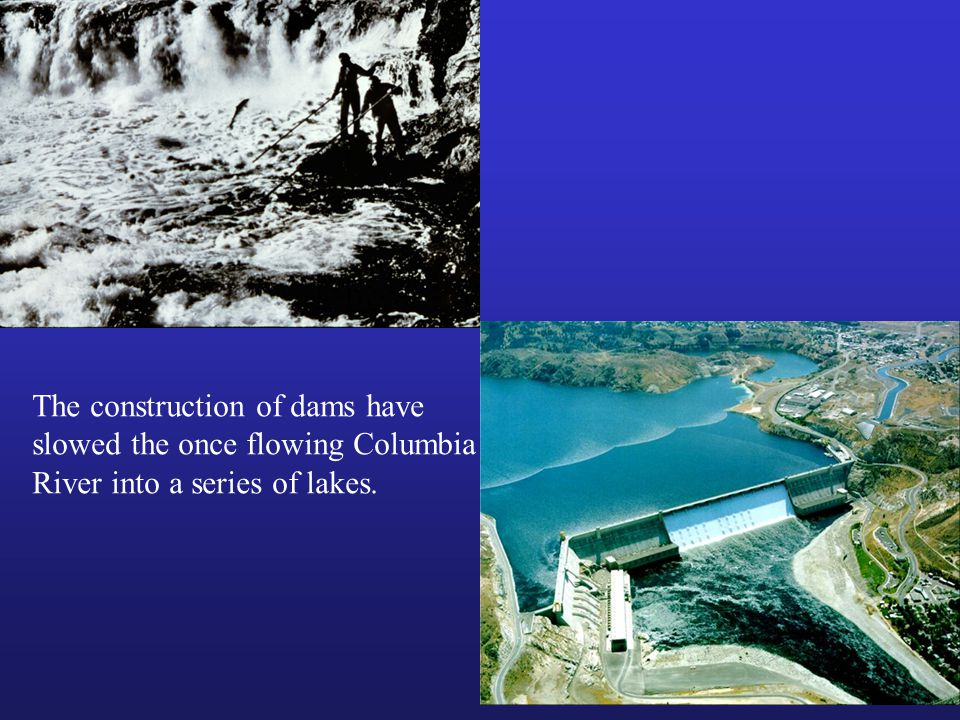 The construction of dams have