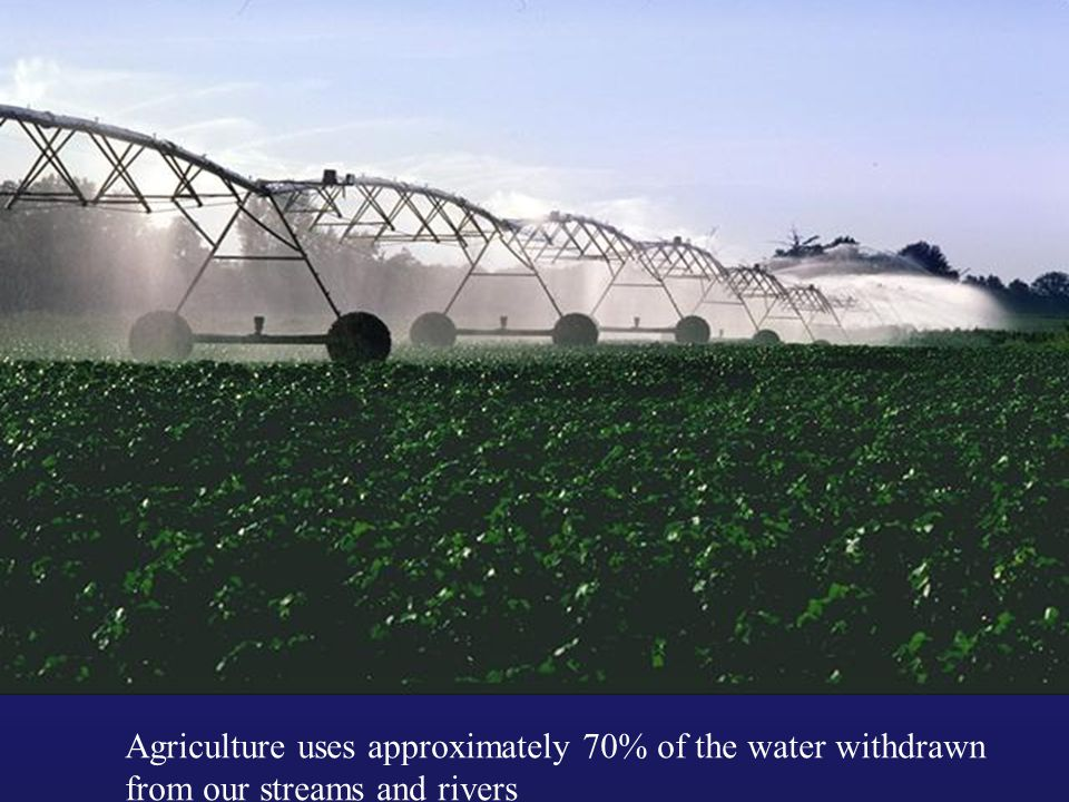 Agriculture uses approximately 70% of the water withdrawn