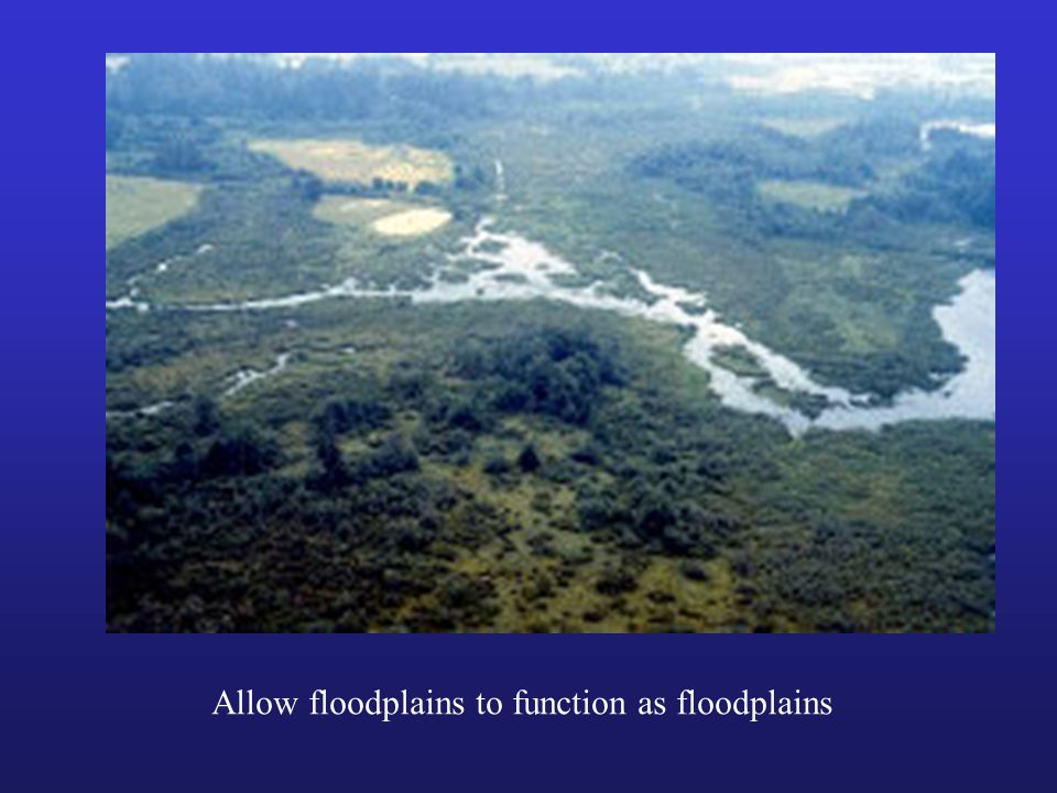 Allow floodplains to function as floodplains