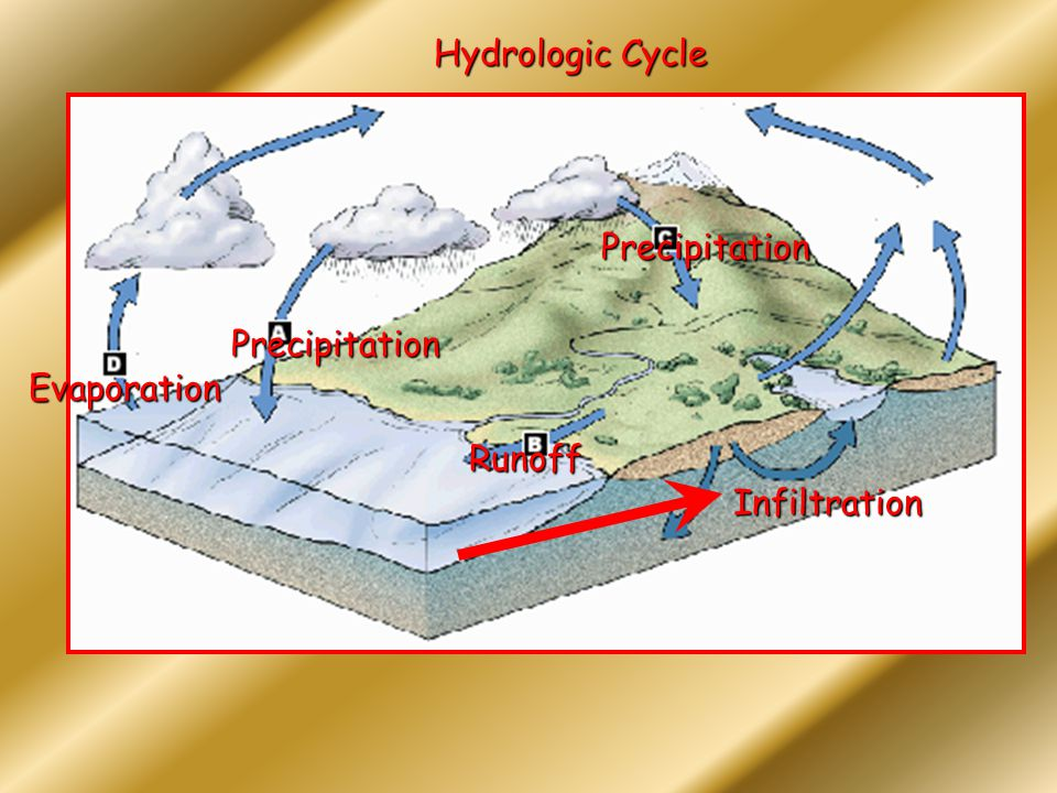 Hydrologic Cycle Precipitation Precipitation Evaporation Runoff Infiltration